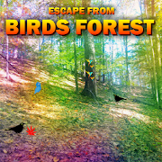 Escape From Birds Forest V1.0.0.1