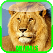 Animal Sounds Zoo 1.0.2