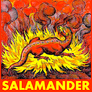 Salamander: Elemental Spirit of Fire (Mythology) 1.0