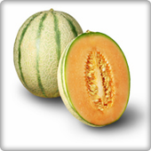 Cantaloupe Fruits Onet Game 1.0