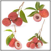 New Lychee Fruit Onet Game 1.0