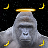 Harambe Space 1.0
