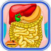 Stomach Surgery Simulator 1.4