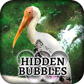 Hidden Bubbles: Forest Haven 1.0.3