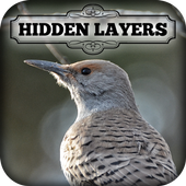 Hidden Layers: Winter Birding 1.0.6