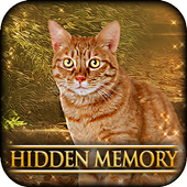 Hidden Memory - Cat Tailz 1.0