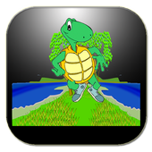 Crazy Turtle Runner 1
