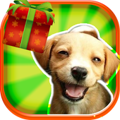 Dog Runner 3D 1.1