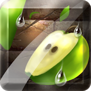 Fruit Slice 1.4.5