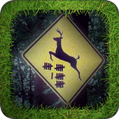 Deer Crossing 1.0