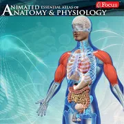 Anatomy & Physiology-Animated 1.7