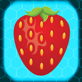 Fruit Burst 1.2
