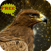 Golden Eagle Bird Simulator 1.0.0