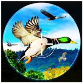 Birds Hunter 2017 1.2