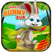 Bunny Runner Carrot Adventure 1.2