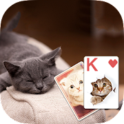 Solitaire Cute Cats Theme 1.9