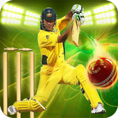 Cricket Games 2017 Free 3D 2.1
