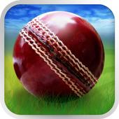 Cricket WorldCup Fever 15.0