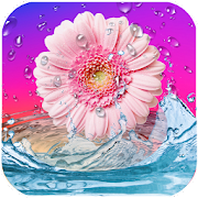 Daisies Live Wallpaper 1 0 APK Download - Android