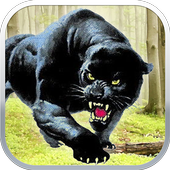 Black Panther Sniper Shooter 1.0.6