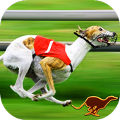 Dog Racing games & Wolf Stunts 1.2