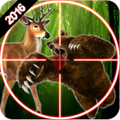 Hunting jungle Animals 2016 1.0