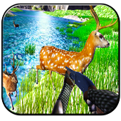 Wild African Animals Hunting 1.1