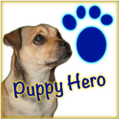 Puppy Hero: Pug in Puppy Land 1.3