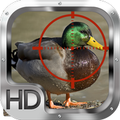 Duck Hunter 1.0