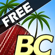 Beach Cricket 2.5.5