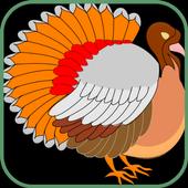 Tenacious Turkeys