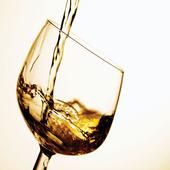 Элитный Алкоголь 1.0