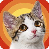 Cat Adventure Hidden Object 1.0.1.0