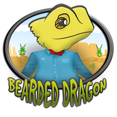 bearded dragon 1.1