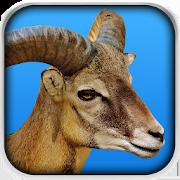 Goat Fight Simulator 1.1.1
