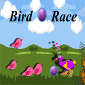 Bird Egg Race 1.0