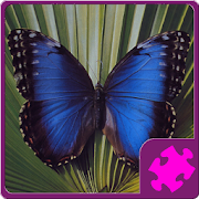 Butterfly Puzzle 1.00