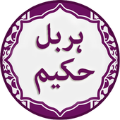 Shia Ringtones Offline / Shia Islamic Ringtones 1 0 APK