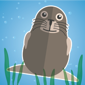 Seal Force 1.0.0