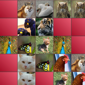 Animals Matching Game 1.20