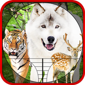 Hunting Animals & Birds 1.0