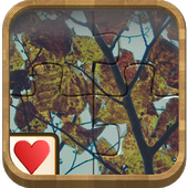 Jigsaw Solitaire - Autumn 1.0