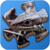 Super Jigsaws Bugs & Creatures 1.1