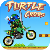 Turtle cross 🚩 1.1