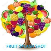 Fruit Splash Shot