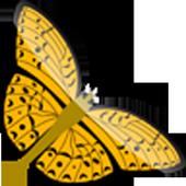 Evil Butterfly Swipe