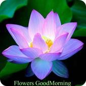 Flowers Goodmorning Goodnight