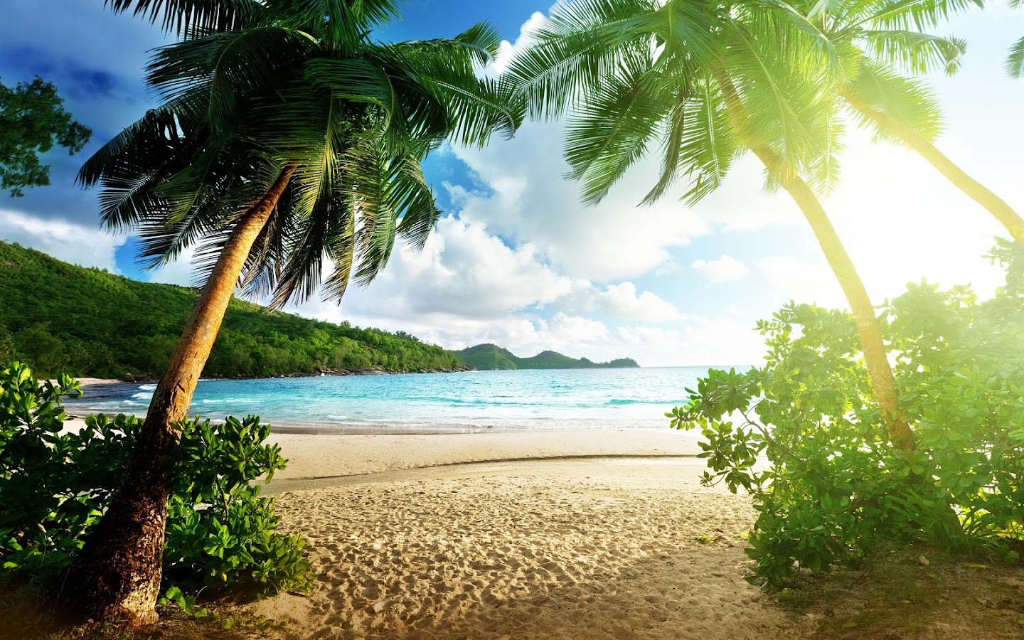 Paradise live wallpaper beautiful pictures 21 apk download paradise live wallpaper beautiful pictures 21 screenshot 6 voltagebd Gallery