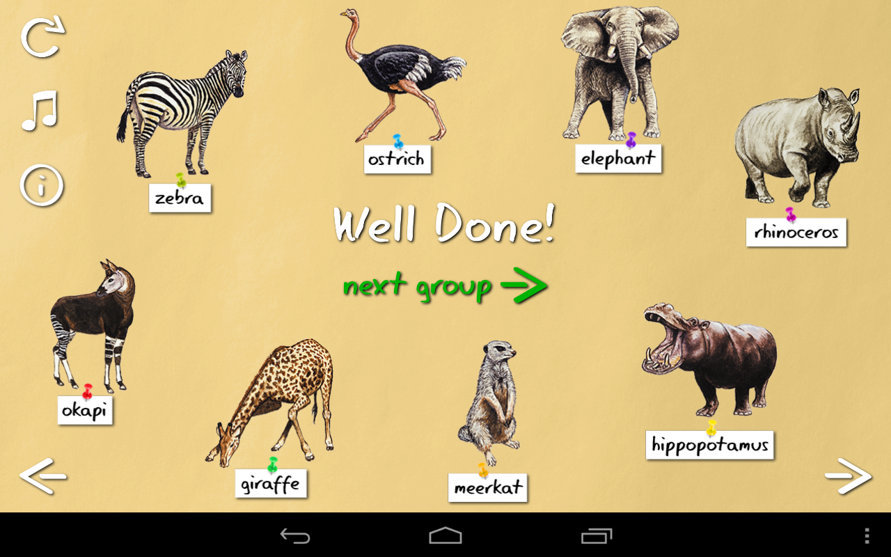 Animal Names Starting With The Letter T
