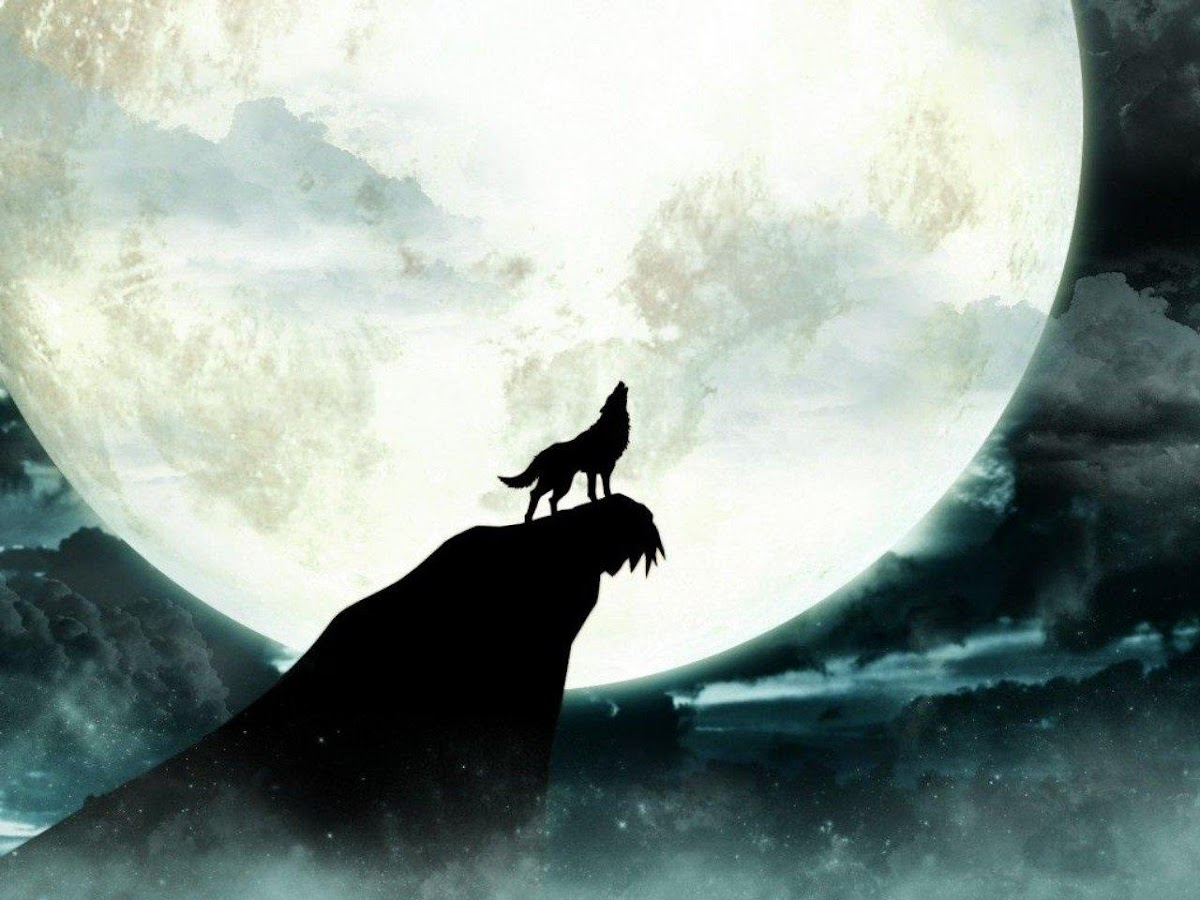 wolf moon live wallpaper 10 apk download android